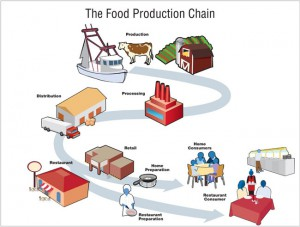 food-production-chain-650px